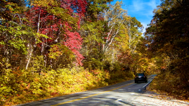 SUV Driving-Up Scenic Highway 276 During Fall in Smoky Mountains video
