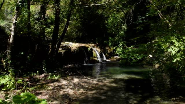 イタリアの森の小さな野生の川に無人空中ショット - 湧水点の映像素材/bロール