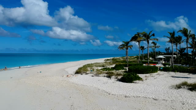 stockvideo's en b-roll-footage met luchtfoto van het gedreun van palmbomen op het strand in de baai van grace, providenciales, turks- en caicoseilanden - providenciales