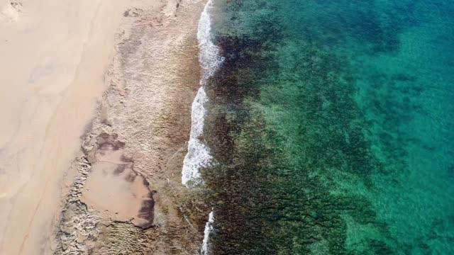 vídeos de stock e filmes b-roll de drone aerial view of waves breaking on sand beach - ilha da madeira