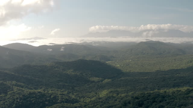 Drone aerial view on a foggy morning summer green mountains in a amazon tropical forest in Brazil. Aerial view of mountains in brazilian amazon rainforest amazon stock videos & royalty-free footage