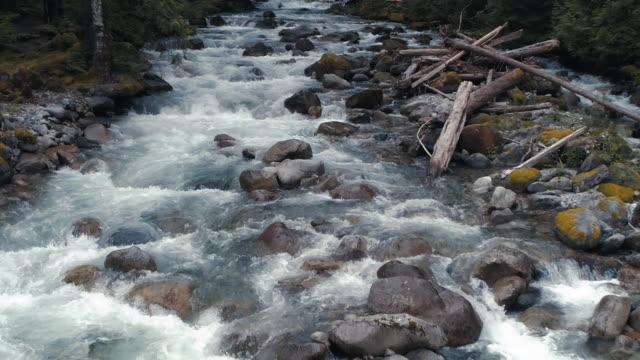 ワシントンの森の流れる川ホワイトウォーターのドローンブーメラン ビデオ