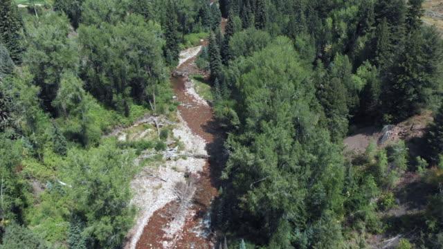 vídeos de stock, filmes e b-roll de drone moscas sobre creek em aspen colorado - condado de pitkin