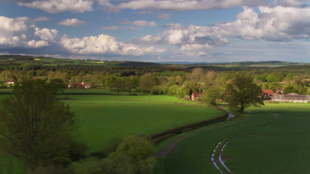 drone flight across farmland towards cocking, west sussex - south downs video stock e b–roll