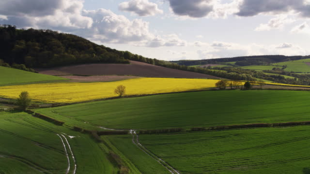 drone flight across fields of grass and rapeseed in england - south downs video stock e b–roll