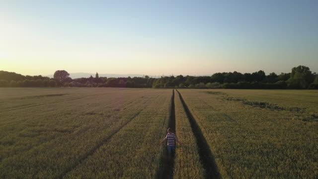 Drohnenflug bei Sonnenuntergang über Weizenfeld nach laufenden Erwachsener mit Stadt im Hintergrund – Video
