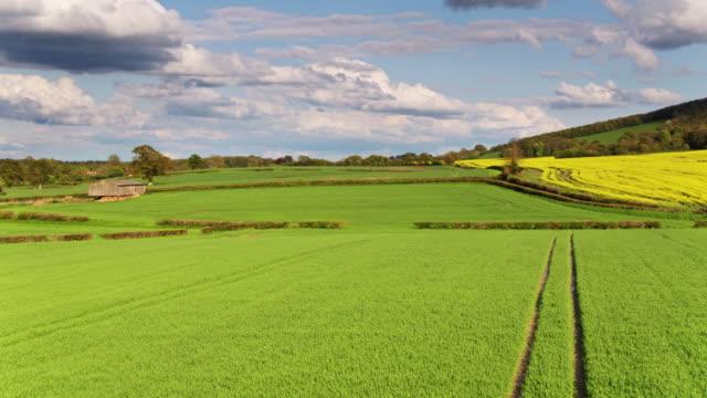 drone flight over english farmland - sussex occidentale video stock e b–roll
