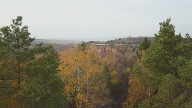 vídeos de stock e filmes b-roll de drone flight over fall forest. autumn leaves and trees. orange, red, yellow and green beautiful scene. - setembro