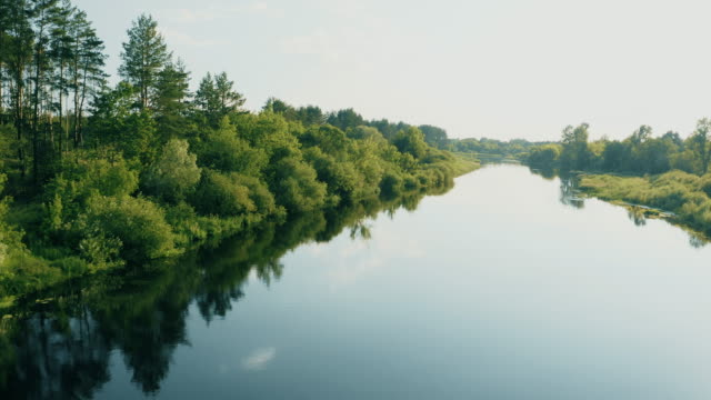 Drone Flight View Above Calm River Surface. Green Forest Woods Landscape In Sunny Summer Evening. Top View Of Beautiful European Nature From High Attitude. Drone View. Bird's Eye View 4K Drone Flight View Above Calm River Surface. Green Forest Woods Landscape In Sunny Summer Evening. Top View Of Beautiful European Nature From High Attitude. Drone View. Bird's Eye View 4K. belarus stock videos & royalty-free footage