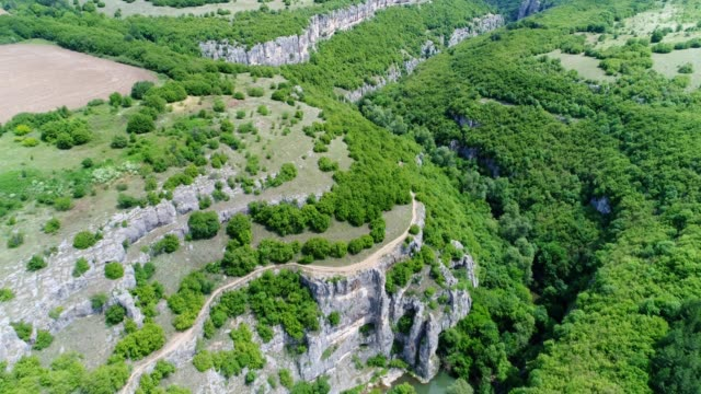 Drone flying over a canyon, drone point of view over a karst formation of rocks in springtime.  Aerial view over green forests and vertical cliffs of a canyon and a riverbed