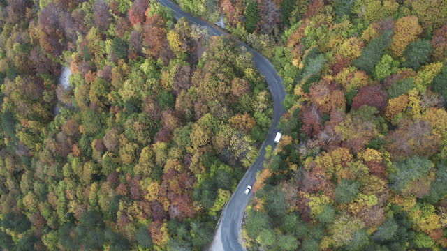 Drone following vehicle in autumn season in highway road.