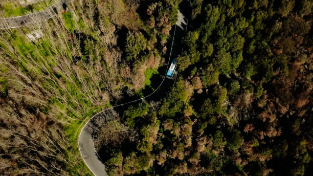 drone follows blue bus driving along mountain road. aerial view of a very narrow forest driveway. travel and tourism. 4k - bus stock videos and b-roll footage