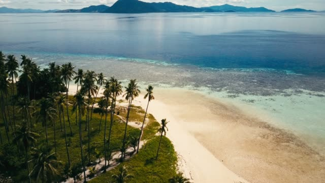 vídeos y material grabado en eventos de stock de imágenes de zángano de las islas tropicales alrededor de sabah, borneo, malasia - micronesia