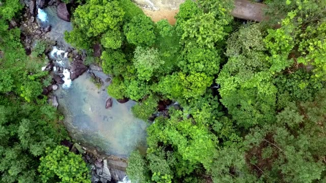 Drone Moves up and Shows Mountain River Crossed by Road Drone moves up and shows narrow mountain river with rocks crossed by road among wild jungles sri lanka stock videos & royalty-free footage