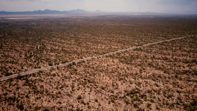 Drone panning right high above giant cactus desert field scenery and car on the road in epic Arizona national park USA.