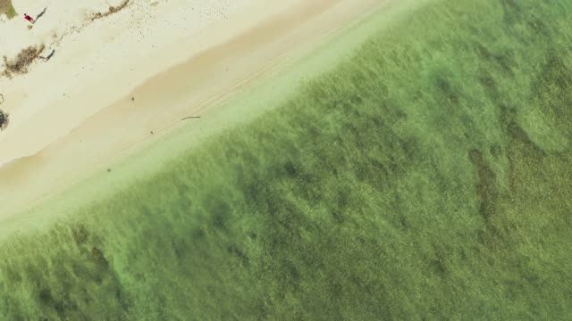 Drone point of view looking directly down and descending towards the calm clear green sea lapping on the sandy beach in Hawaii - video