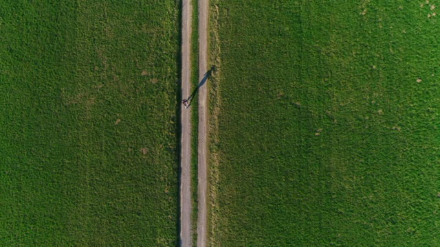 drone synvinkel på ung kvinna jogging på landsväg - single pampas grass bildbanksvideor och videomaterial från bakom kulisserna