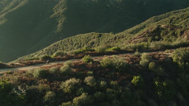 Drone Shot Following Cyclist on Dirt Trail