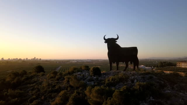 vídeos de stock e filmes b-roll de drone shot of a bull sign in the roads of spain - touro animal macho