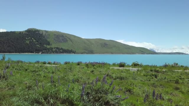 Drone Shot of Meadow and Blue Glacial Lake