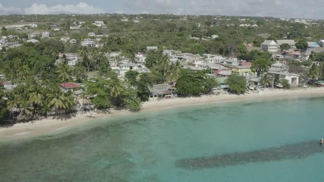 Drone shot of tropical coastline video