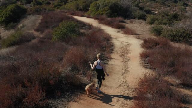 stockvideo's en b-roll-footage met drone shot van vrouw die haar hond op de sporen van la canada loopt - 50 54 jaar