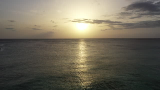 Drone shot over palm trees in the Caribbean at sunset video