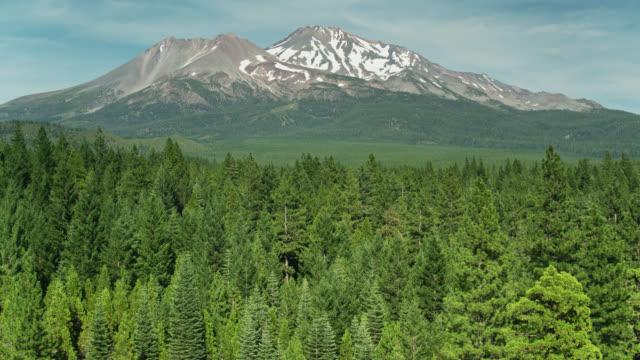 Drone Shot Over Treetops Towards Mount Shasta, California