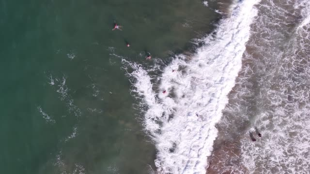 A drone shot showing a group of women swimmers enjoying the sea.