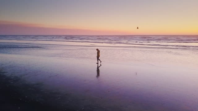 drone shot - solitary woman walking on beach at sunset - точка съёмки стоковые видео и кадры b-roll