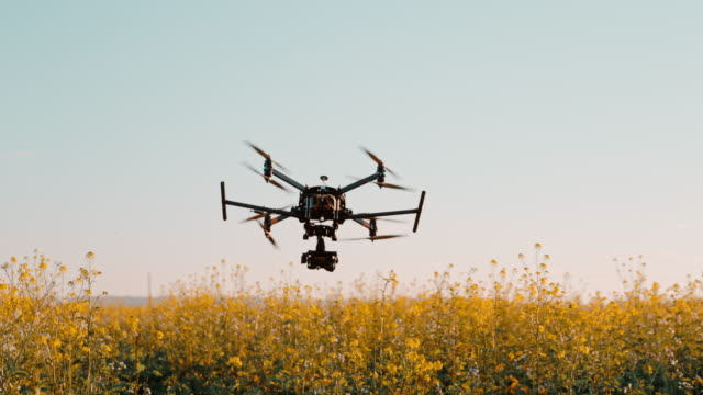 vídeos de stock, filmes e b-roll de drone super slo mo decola em um campo de canola - multicóptero