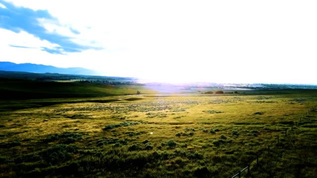 drohne linksabbiegen über herrliche ruhige wiesen, grüne ebene prärielandschaften mit erstaunlich blauen sonnigen himmel. - grasland stock-videos und b-roll-filmmaterial