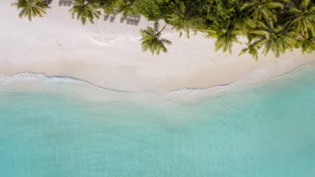 vídeos de stock, filmes e b-roll de vista de drone da ilha tropical - estação turística