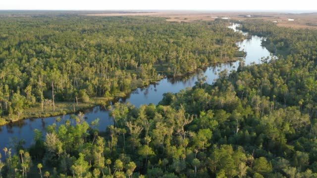 Drone View of Wild River in Florida