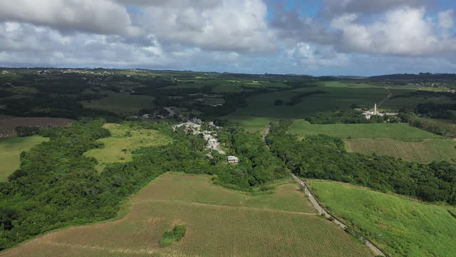 Drone view (rotation) over Barbados countryside. (2) video