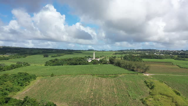Drone view (forward) over Barbados countryside. (1) video