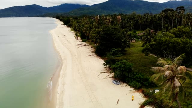 Drone view to sandy white shore and green tropical nature in Thailand. Paradise Beach. Wooden Bungalow. Drone view to sandy white shore and green tropical nature in Thailand. Paradise Beach. Wooden Bungalow. nakhon si thammarat stock videos & royalty-free footage