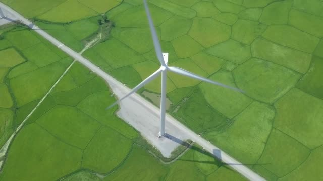 Drone view windmill turbine on green field. Wind power turbine generation on energy station aerial view. Alternative energy sources, ecology, environment conservation. Eco friendly and nature safety Drone view windmill turbine on green field. Wind power turbine generation on energy station aerial view. Alternative energy sources, ecology, environment conservation. Eco friendly and nature safety cultivated land stock videos & royalty-free footage