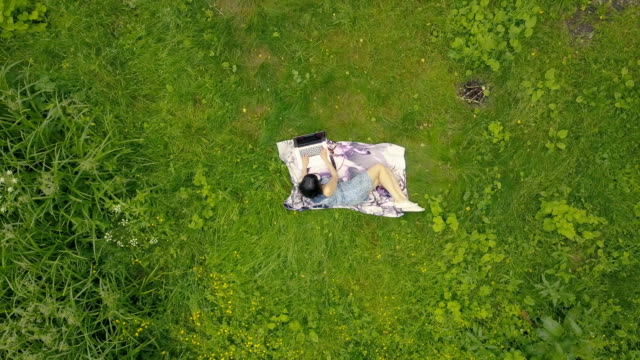 Drone view young woman working on laptop on green grass video