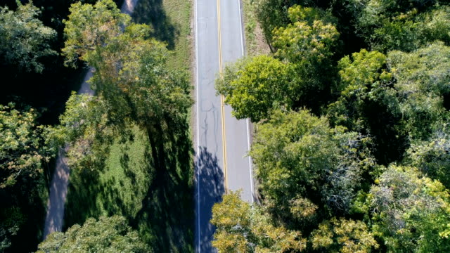 Drones: An Aerial Road Trip Aerial Drone Straight down angle above Tree covered road along a road trip perfect movie road with tree canopy perfect sunshine and a nice open road to freedom country road stock videos & royalty-free footage