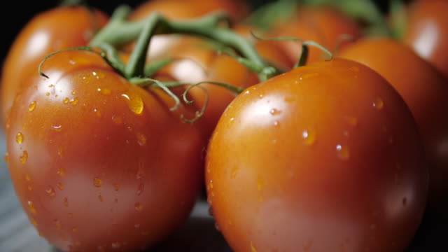 A drop of water drops from a fresh tomato. Wet. No movement.Close up.Dark background. tomato salad stock videos & royalty-free footage