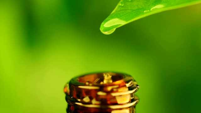 vídeos de stock e filmes b-roll de drop of water falling into bottle - fitoterapia