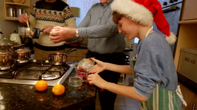vídeos de stock e filmes b-roll de dropping cranberries on the floor - christmas cooking