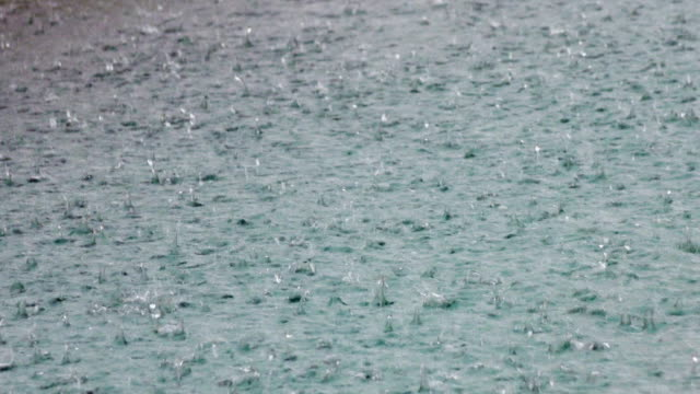 Drops of a tropical rain fall in water video