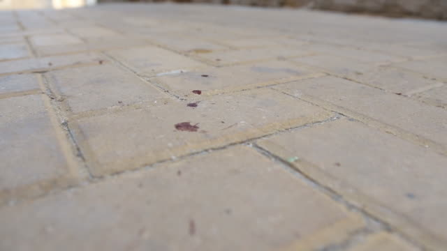 Drops of Blood On Street In Middle East video