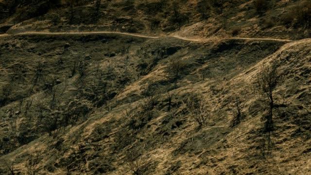 drought stricken terrain - brent video stock e b–roll