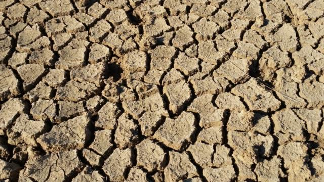 乾燥の割れた地球気候の間に干ばつ災害を変更します。 - 乾燥点の映像素材/bロール