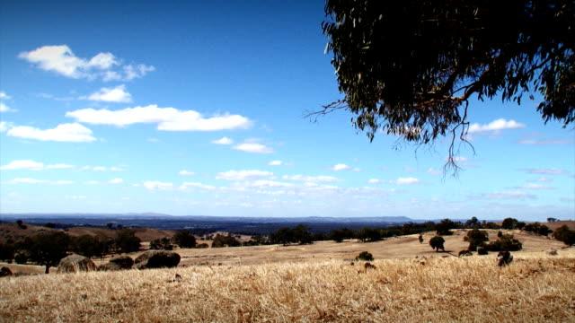 Dry Landscape video