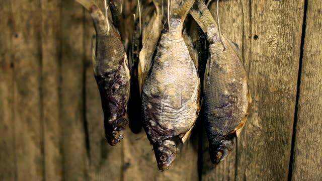 Dry roach fish video