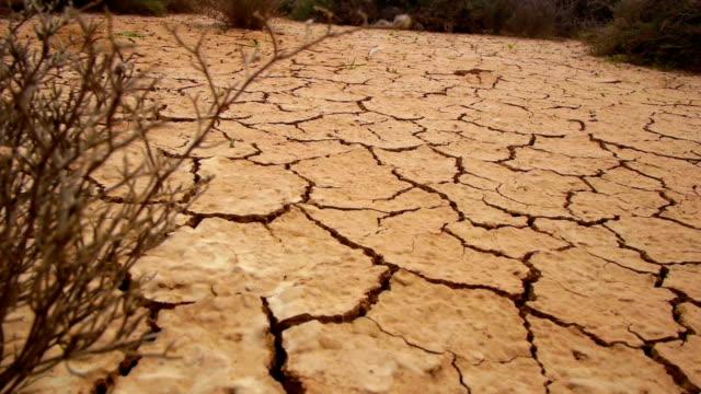 Dry soil video